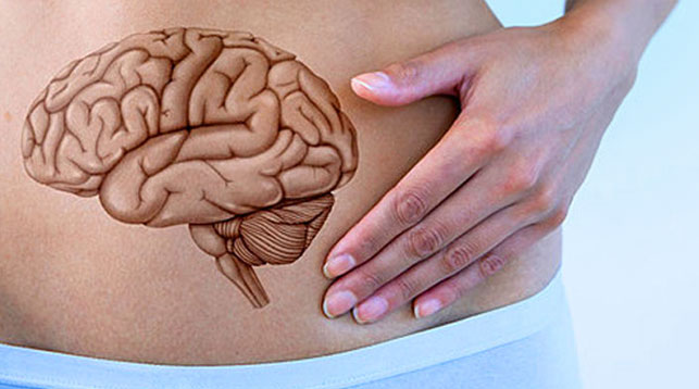 introduction to Colon Health